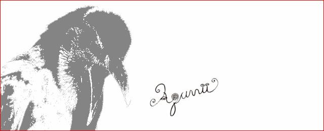 「kara-SのAquvii」(3/2〜31)