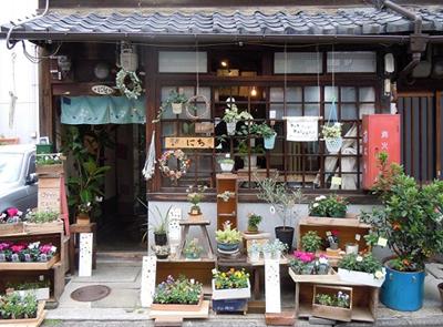 花屋にちと星雲おやつ(1/18〜31)