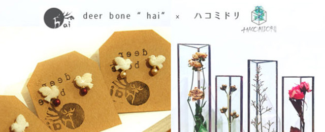 """deer bone """"hai""""×ハコミドリ fair (5/23〜6/5)"""