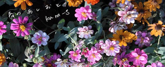春のあしおと(2/18~3/10)